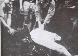 Soldato ustasha sorride mentre decapita un prigionero con un'ascia