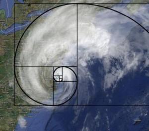 hurricane and fibonacci spiral